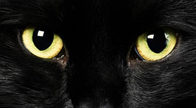 Top 10 cele mai amuzante superstitii din lume!